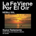 Nebaj - 2008 Edition