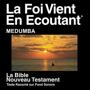 - Bible Society - Matthew 26