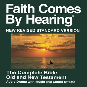 - New Revised Standard Version  - John 1