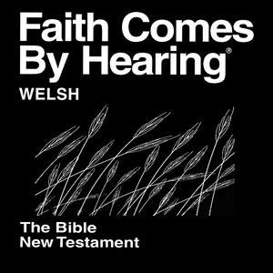 - Beibl Cymraeg Newydd - RHUFEINIAID  9